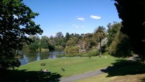 Der botanische Garten mitten im Stadtzentrum und nur 5 Minuten von Matt's Wohnung entfernt :D