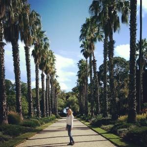 überall in Melbourne gibt es Parks. Fast jedes Viertel bzw. jeder Bezirk hat seinen eigenen Park und diese sind immer sehr gepflegt. Das hier ist der botanische Garten in Williamstown.
